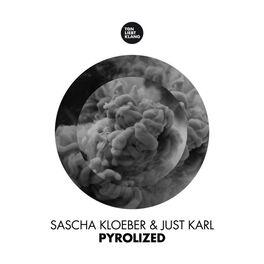 Album cover of Pyrolized