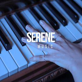 Album cover of # 1 Album: Serene Music