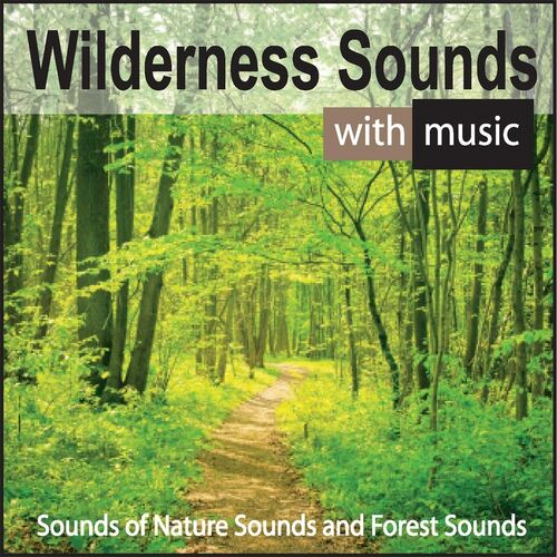 Steven Snow: Wilderness Sounds With Music: Sounds of Nature Sounds