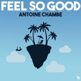 Album cover of Feel so Good