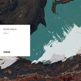 Album cover of Trait
