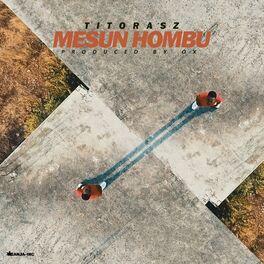 Album cover of Mesun Hombu