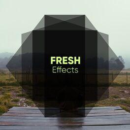 Album cover of # 1 Album: Fresh Effects