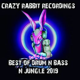 Album cover of Best of Drum and Bass N Jungle 2019