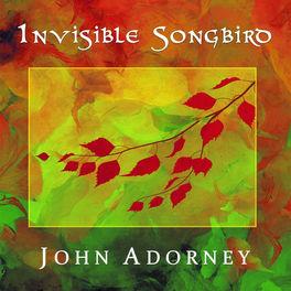 John Adorney - Invisible Songbird