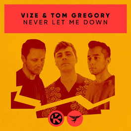 Album cover of Never Let Me Down