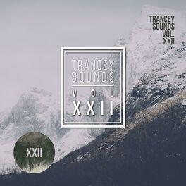 Album cover of Utrecht Series - Vol.XXII