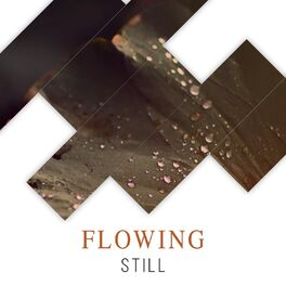 Album cover of # Flowing Still