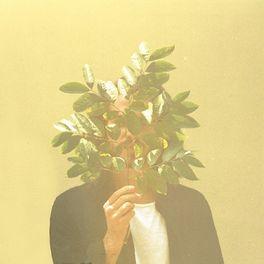 Album cover of French Kiwi Juice