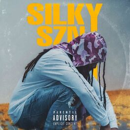 Album cover of Silkyszn