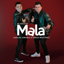 Album cover of Se Volvió Mala