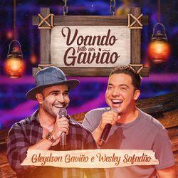 Gleydson Gavião – Voando Feito um Gavião