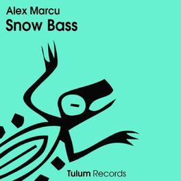 Album cover of Snow Bass