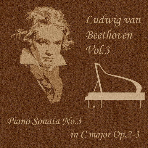 viva voce beethoven piano sonata no 8 The piano sonata no 8 in c minor (pathetique), op 13 is a work for solo piano written by ludwig van beethoven it was written between 1797 and 1798.