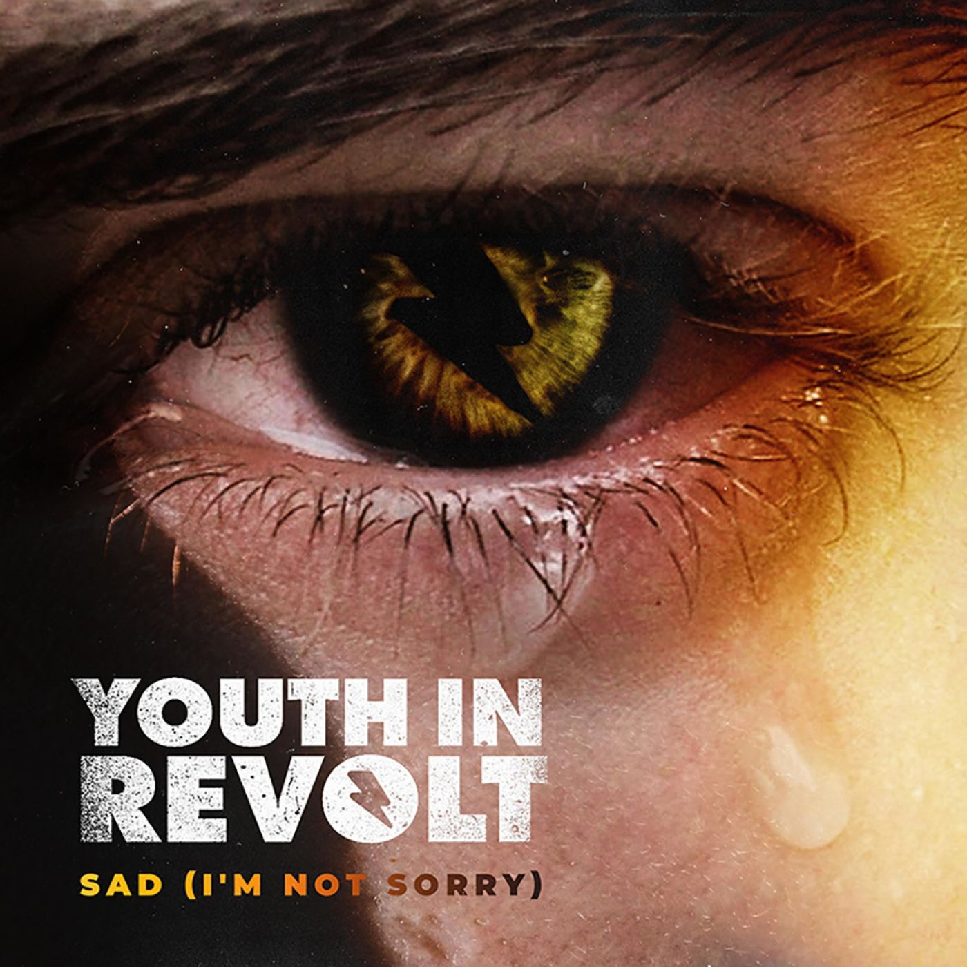 Youth in Revolt - Sad (I'm Not Sorry) [single] (2020)