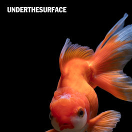 Album cover of Under the Surface