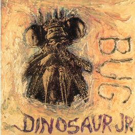 Album cover of Bug