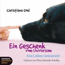 Album cover of Ein Geschenk vom Universum - Eine Liebes-Geschichte (Gekürzt)