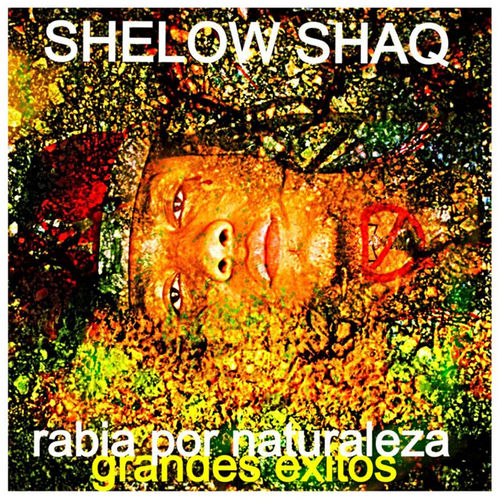 shelow shaq un tiguere entregao
