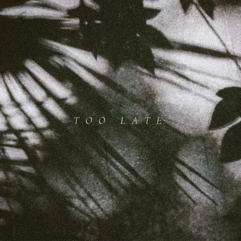 Too Late cover