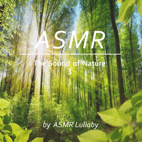ASMR Lullaby: Forest Sounds For Relaxation, Healing And Meditation