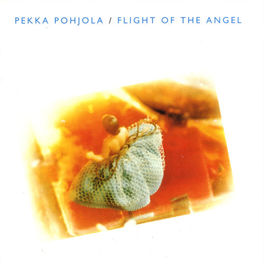 Album cover of Flight of the Angel (Re-Issue)