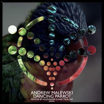 Danicing Parrot (Alexander B Remix) cover