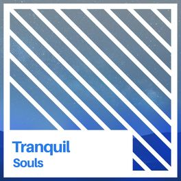 Album cover of # 1 Album: Tranquil Souls