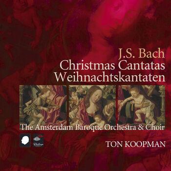 Singet dem Herrn ein neues Lied, BWV 190 cover