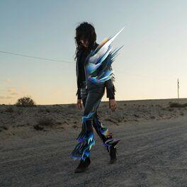 Album cover of Licht