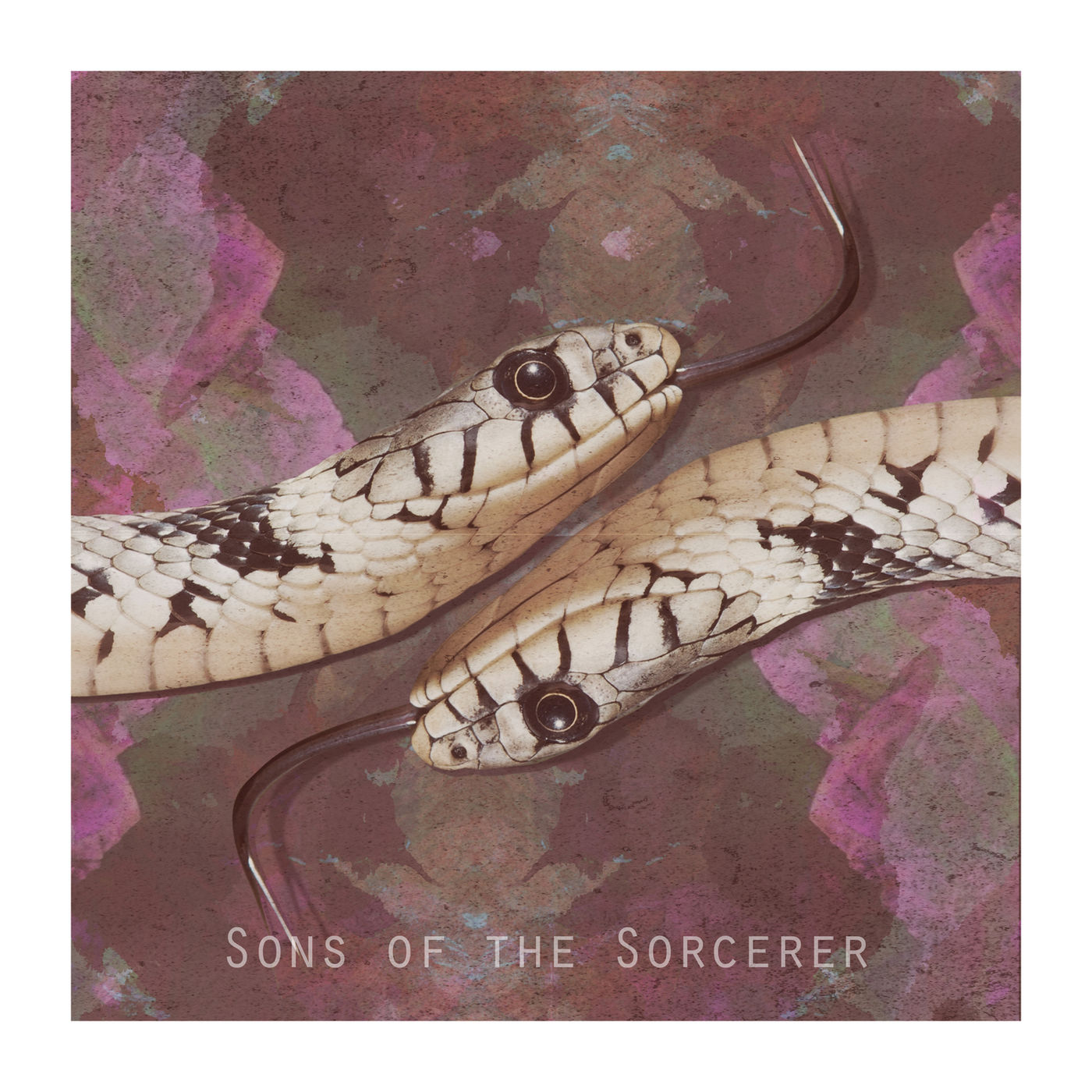 Empyrean Lights - Sons of the Sorcerer [single] (2019)