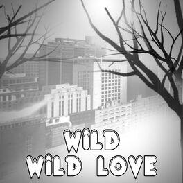 Wild Wild Love Originally Performed By Pitbull Feat G R L