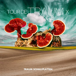 Album cover of Tour De Traum X