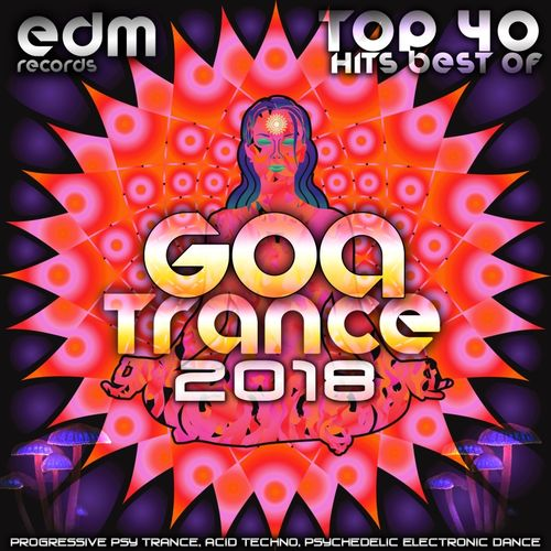 Various Artists: Goa Trance 2018 - Top 40 Hits Best of