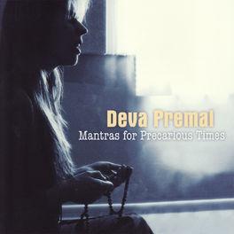 Album cover of Mantras for Precarious Times