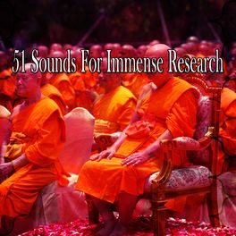 Album cover of 51 Sounds for Immense Research