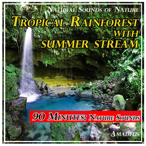 Amadeus: Tropical Rainforest with Summer Stream: Natural