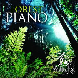 Dan Gibson's Solitudes - Forest Piano 30th Anniversary