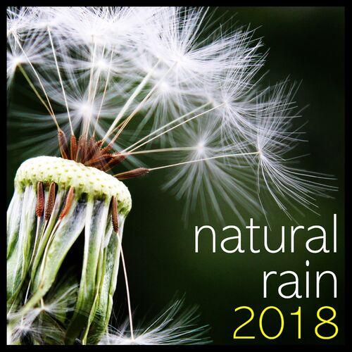 Rain Sounds & Nature Sounds, Heavy Rain Sounds, Rain