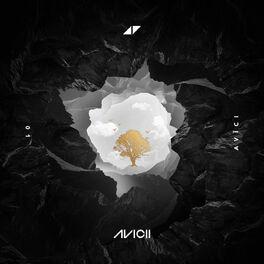Album cover of AVĪCI (01)