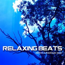 Album cover of Relaxing Beats