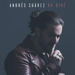 Album cover of No diré