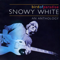 Bird Of Paradise - SNOWY WHITE