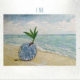 Album cover of I Nu
