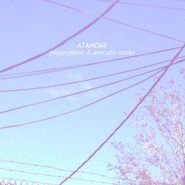 Album cover of Payperplains & Avocado.Smoke