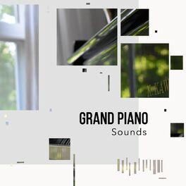 Album cover of # 1 Album: Grand Piano Sounds