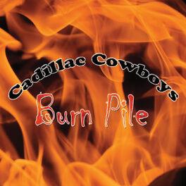 Album cover of Burn Pile