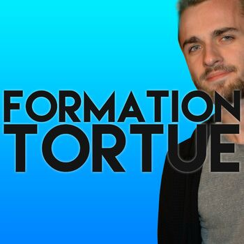 Formation Tortue cover
