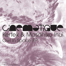 Album cover of Owl In Space EP