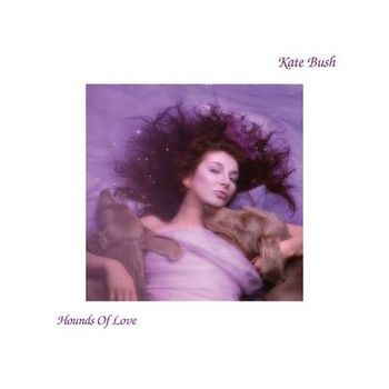 Hounds Of Love cover